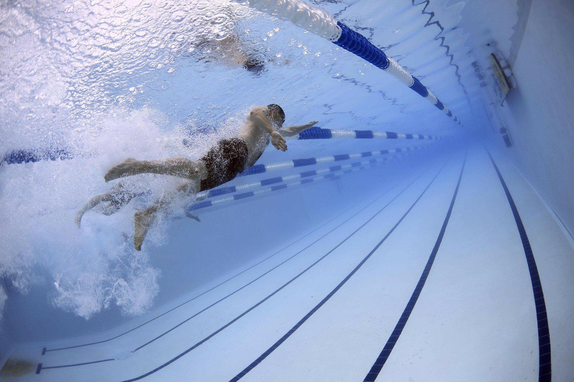 Quel muscle fait travailler la natation?